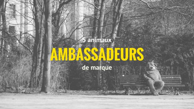 5 animaux ambassadeurs de marque