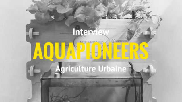 Interview AQUAPIONEERS
