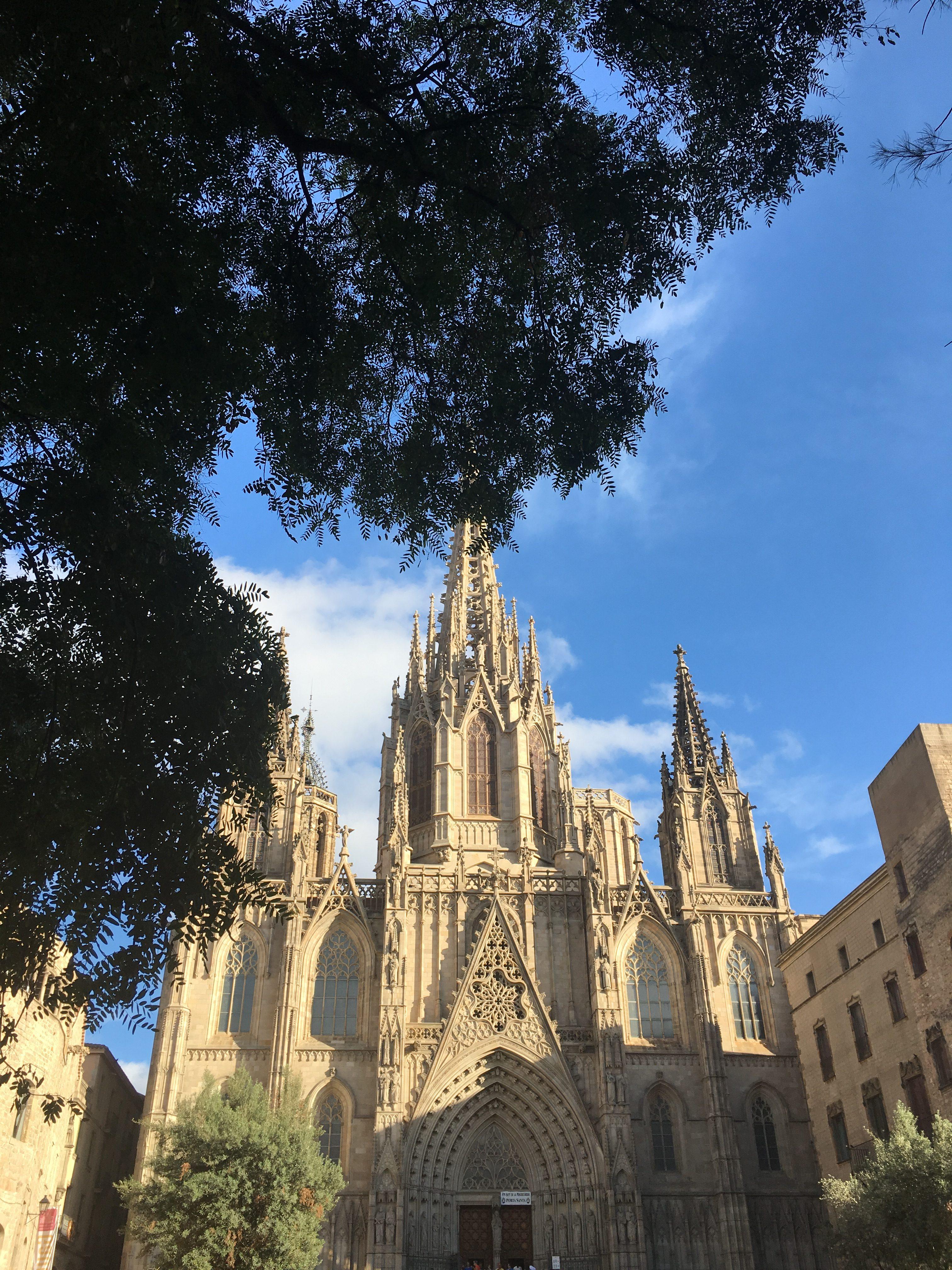 cathedrale - barrio Gotico