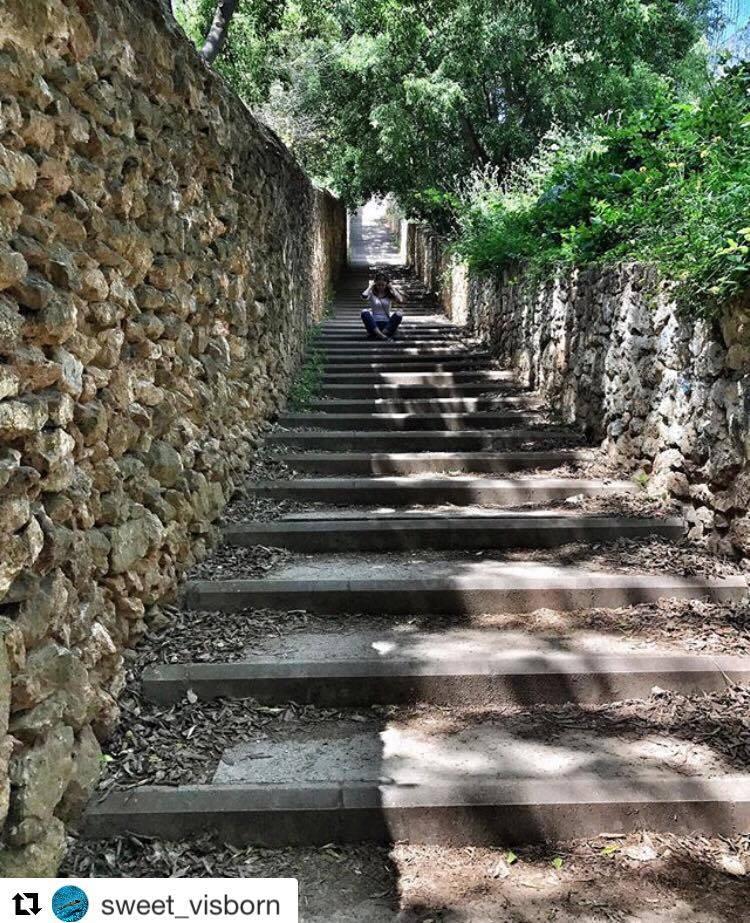 les escaliers du park guell